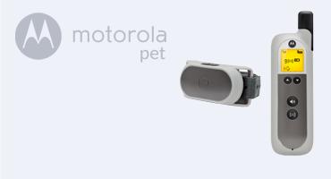 motorola-pet-1-2